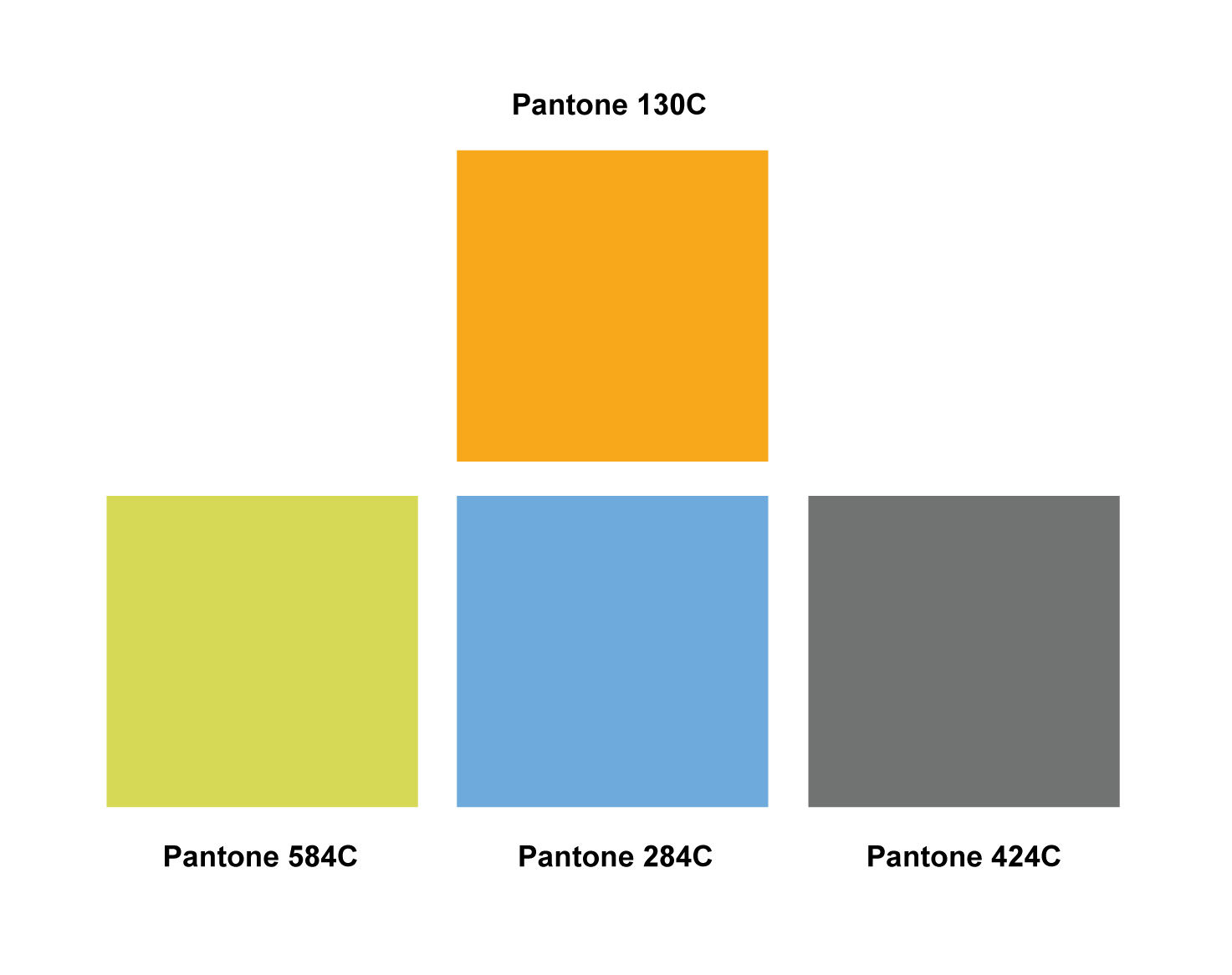 color palette for selco